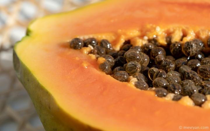 Foto papaja vrucht © mevryan.com
